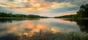 Elbe mit Grasbewuchs im Sonnenuntergang