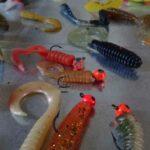 Mit Twister angeln und dabei richtig fangen