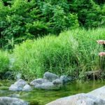 Angler mit Fliegenrute