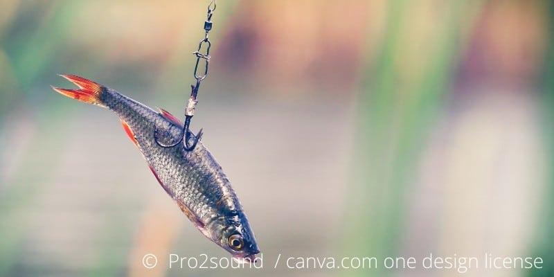 Hechtangeln mit dem Köderfisch